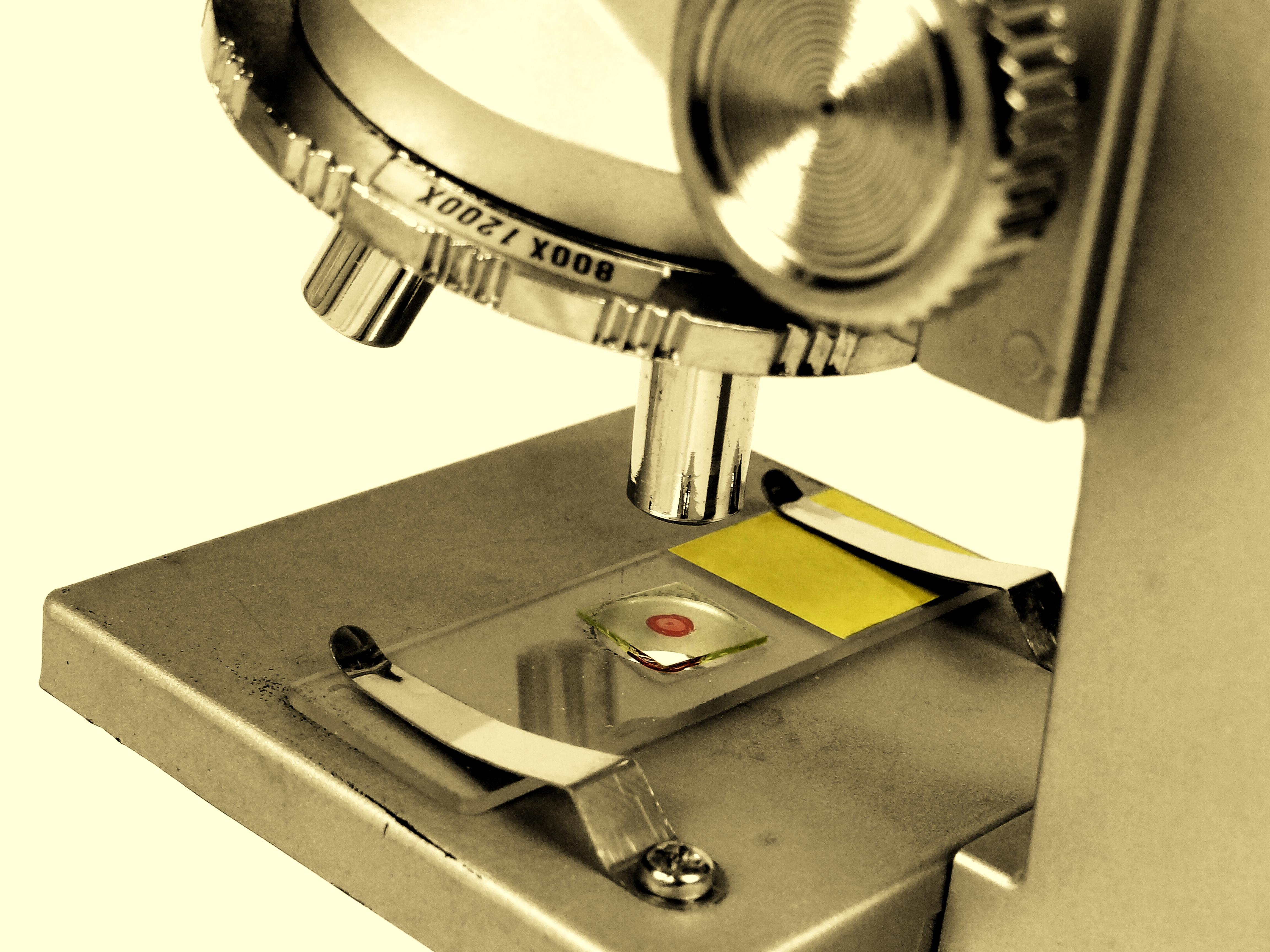 Mikroskopische Untersuchungen